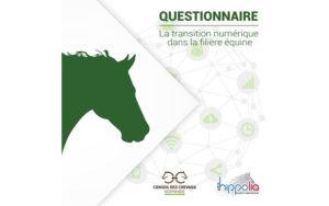 chevaux-normandie_questionnaire-transition-numerique